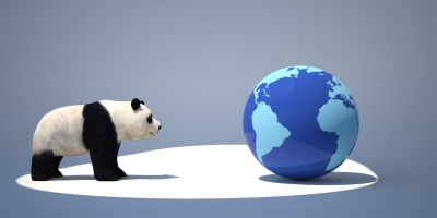 Panda 4.1: Is your Traffic Up or Down?