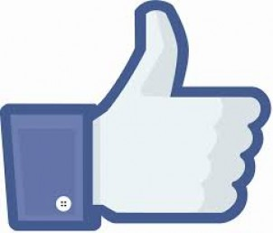 Five Ways to Optimize Your Facebook Fan Page